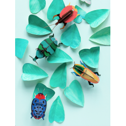 WALL DECORATION - WEEVIL BEETLE
