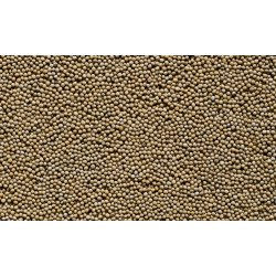 50x60 PILLOW INSERT - MUSTARD SEEDS - FOR SPECIAL ORDER