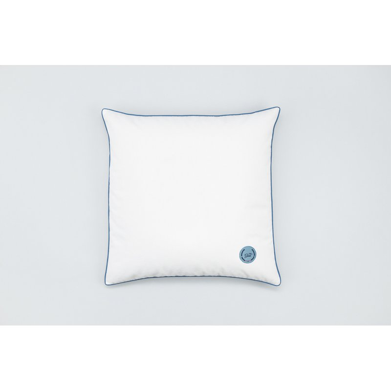 Jaśka pillow with millet hull 40x40 - different colours