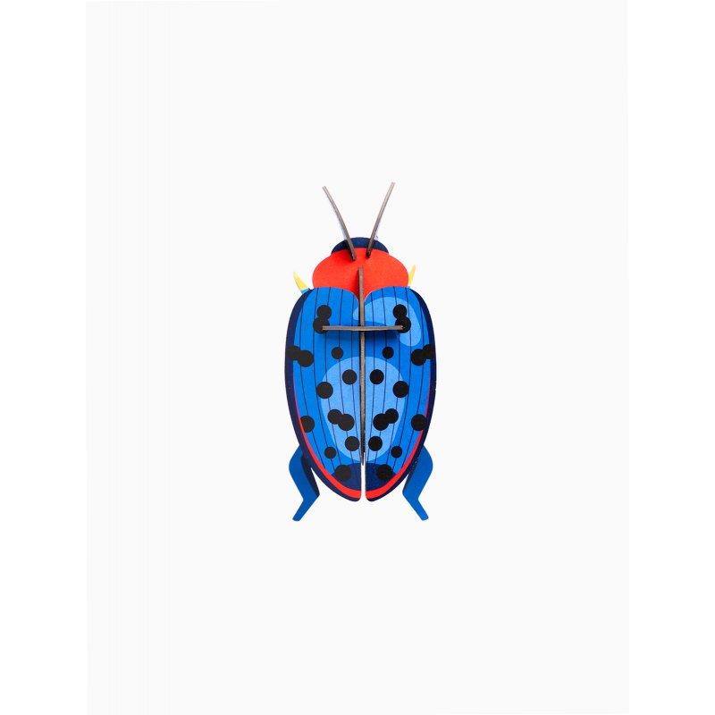 WALL DECORATION - FUNGUS BEETLE